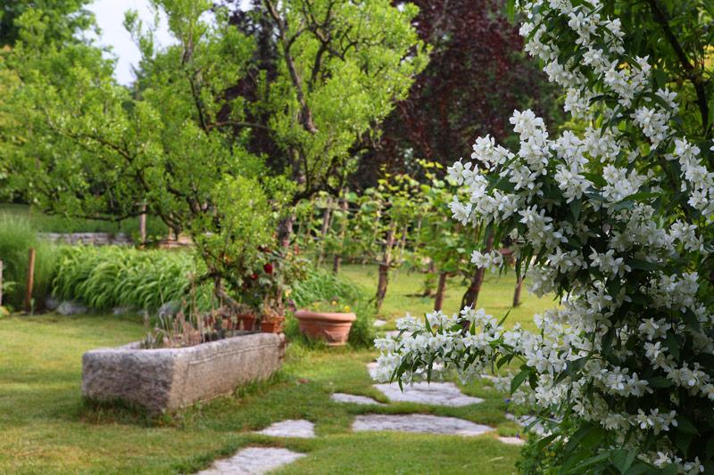 Il giardino rustico naturale il giardino di de pra snc for Giardini di campagna