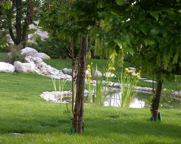 Il giardino della casa di campagna il giardino di de pra snc - Immagini di giardini di villette ...