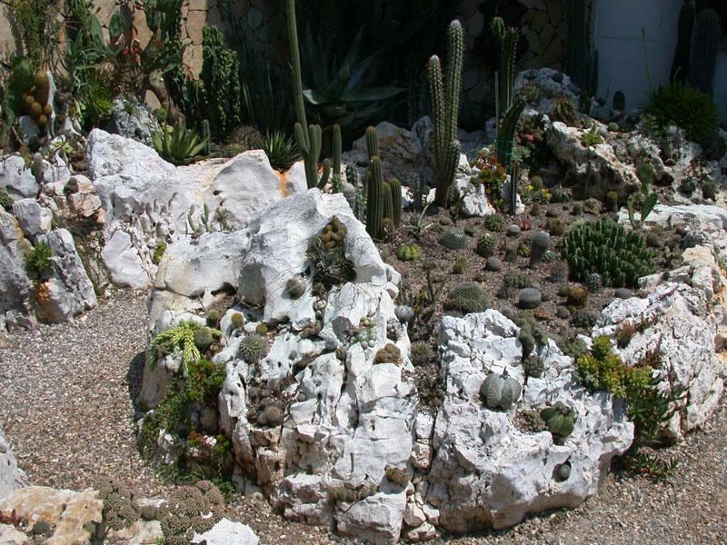 Il giardino di succulente il giardino di de pra snc - Il giardino di ausonia ...